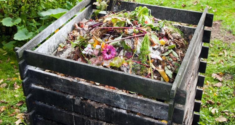 8 tény a komposztálásról - Mit és miért komposztáljunk?