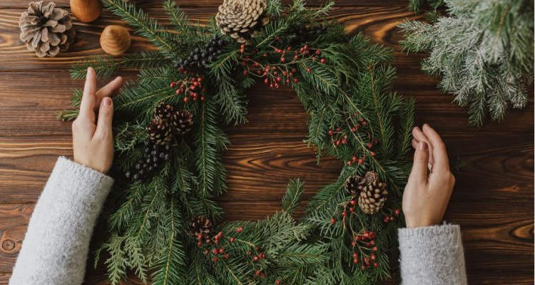 6 + 1 dekoratív növény a kertből – zöld karácsony