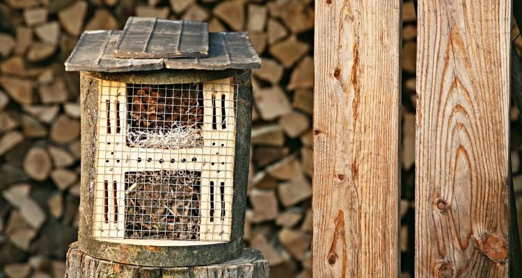 Hasznos kerti állatok