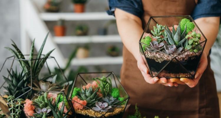 Így készítsünk floráriumot