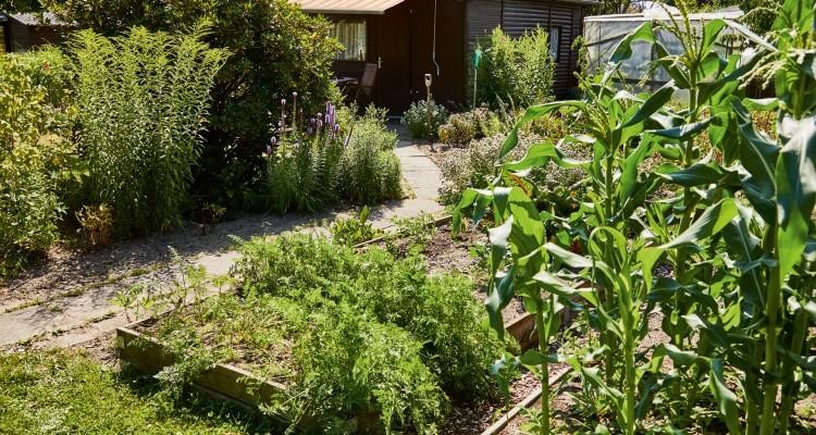 Fenntartható kert